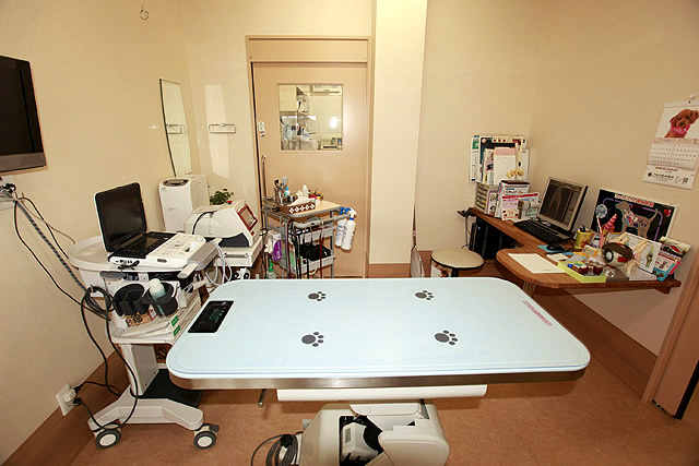 こうわき動物病院photo